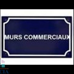 Vente Local commercial Voiron 0 m²