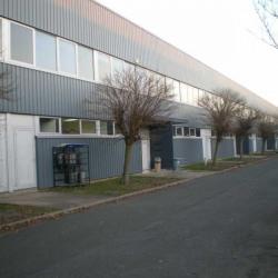 Location Local d'activités Coignières 807 m²