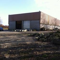 Vente Local d'activités Foucart 1500 m²