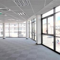 Location Bureau Lyon 7ème 200 m²