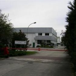 Vente Local d'activités Mitry-Mory 1306 m²