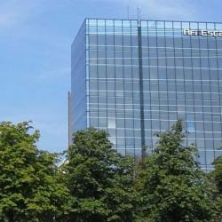 Location Bureau Strasbourg 1420 m²