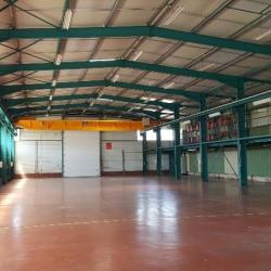 Location Local d'activités La Voulte-sur-Rhône 1800 m²
