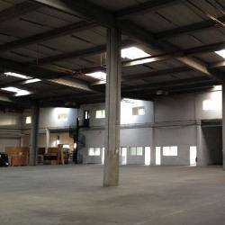 Location Local d'activités Lisses 1165 m²