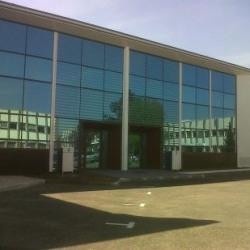 Location Local d'activités Bonneuil-sur-Marne 449 m²