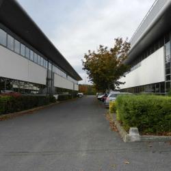 Location Bureau Ris-Orangis 250 m²