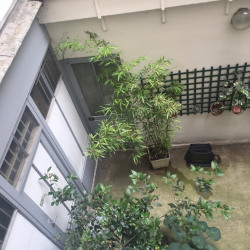 Location Bureau Paris 6ème 6