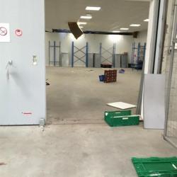 Location Entrepôt Le Havre 740 m²