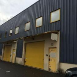 Vente Local d'activités Champigny-sur-Marne 1113 m²