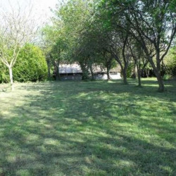 Terrain  de 4000 m²  Mauprévoir  (86460)