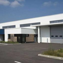 Location Local d'activités Sallaumines 485 m²