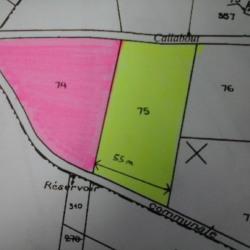 Vente Terrain Marquay 11373 m²