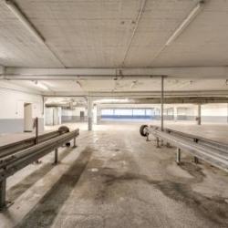 Location Local d'activités Paris 12ème 1157 m²