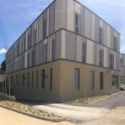 Vente Bureau Saint-Denis-lès-Bourg 70 m²