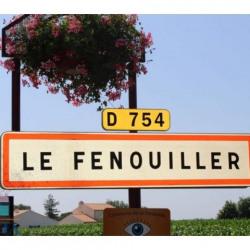 Vente Terrain Le Fenouiller 315 m²