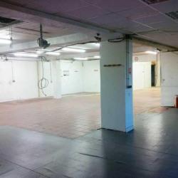 Vente Local d'activités Croissy-Beaubourg 576 m²