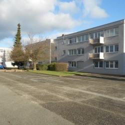 Location Local d'activités Erstein 706 m²