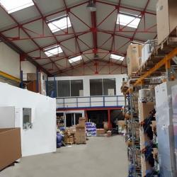 Location Entrepôt Saint-Maur-des-Fossés 440 m²