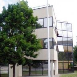 Location Local d'activités Nanterre 1449 m²