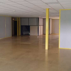 Location Local d'activités Bailly-Romainvilliers 150 m²