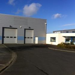 Location Local d'activités Saint-Romain-de-Colbosc 530 m²