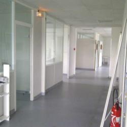 Location Bureau Chilly-Mazarin 454 m²