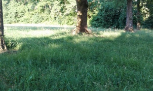 vente Terrain Rivière-Saas-et-Gourby