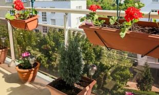 vente Appartement 5 pièces Issy les Moulineaux