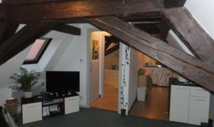 location Appartement 1 pièce Selestat