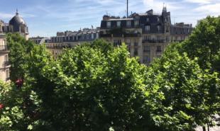 vente de prestige Appartement 7 pièces Paris 14ème
