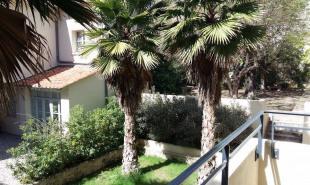 location Appartement 1 pièce Montpellier Peyrou