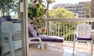 vente Appartement 1 pièce Cannes