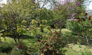 vente Maison / Villa 6 pièces La Celle St Cloud