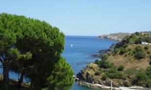vente Appartement 2 pièces Banyuls-sur-Mer