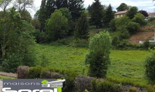 vente Terrain Civrieux-d'Azergues