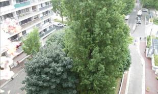 vente Appartement 5 pièces Argenteuil