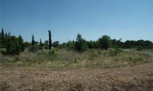terrain agricole a vendre 30250