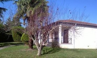 location Maison / Villa 4 pièces Pechbonnieu