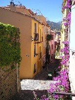 Vacation rental apartment Collioure 193€ - Picture 5