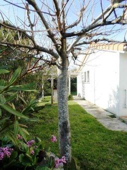 Sale house / villa Pinsaguel 225000€ - Picture 2