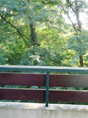 F3 avec terrasse dans la forêt