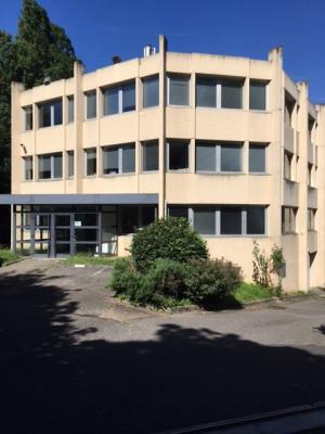Location Local d'activités / Entrepôt Écully