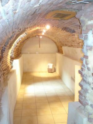 T3 St-Cyprien cave terrasse briq