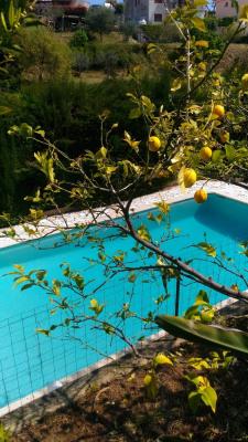 Deluxe sale - Villa 5 rooms - 145 m2 - Saint Laurent du Var - Photo
