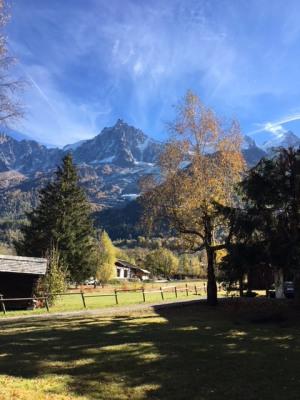 Verkauf - Chalet (Landhaus) 3 Zimmer - Chamonix Mont Blanc - Photo