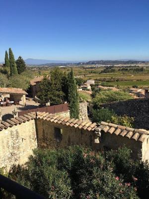 Avignon 10 mn maison de village - vente