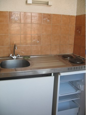 Location appartement Villeurbanne 402€ CC - Photo 3