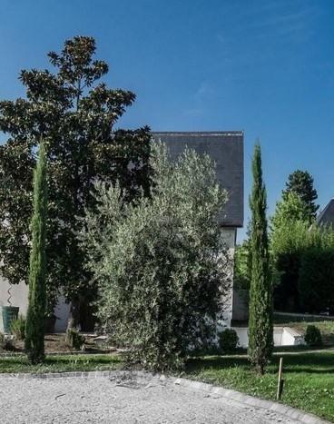 Vente de prestige maison / villa Charbonnieres les bains 1365000€ - Photo 4
