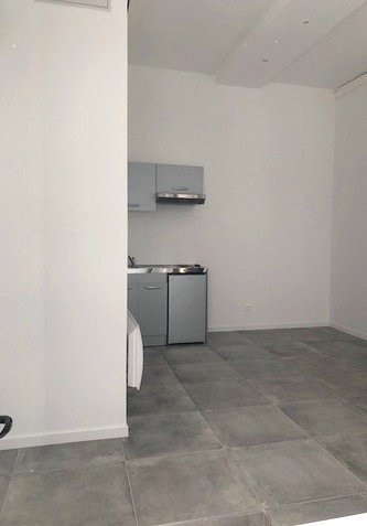 Location appartement Lyon 7ème 530€ CC - Photo 1