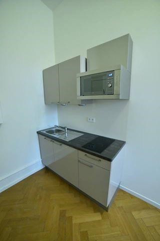 Location vacances appartement Strasbourg 330€ - Photo 10